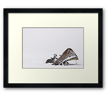 Borgey Framed Print