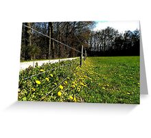 At the spring fence Greeting Card