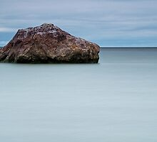 The stone #202 by Eduard Gorobets
