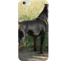 Black Miniature Pinscher iPhone Case/Skin