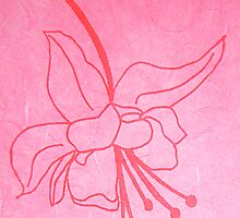 Hanging Spider Flower, Hand Drawn Screen Print on Silk Paper, 2008 by emmasm02