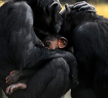 Family Time by Peter Kurdulija