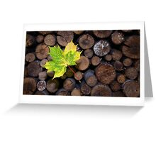 The Maple-Leaf 2 Greeting Card