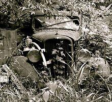 Abandoned Classic Truck by AlphaEyePhoto