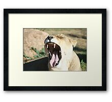 This Is So Boring Framed Print