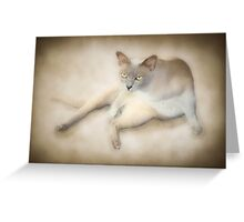 If looks could kill ..... Greeting Card