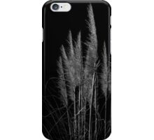Vertical pampas grass on black background. iPhone Case/Skin