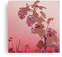 Flowering Currant Canvas Print