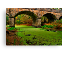 """Green River"" Canvas Print"