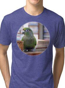 R.I.P. Bubbles - NZ Tri-blend T-Shirt