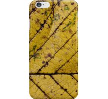 autumn decay iPhone Case/Skin