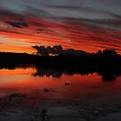 glory in the sky qld australia by Jeannine de Wet