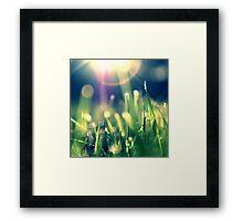 Starfall Framed Print