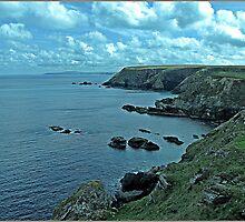 """The North Cornish Coast"" by Malcolm Chant"