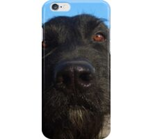Black dog iPhone Case/Skin