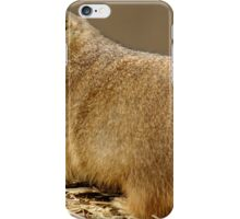 A black-tailed prairie dog iPhone Case/Skin