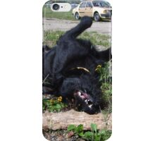 Playing black dog iPhone Case/Skin