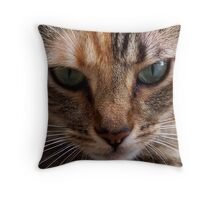 Xochi 6 Throw Pillow
