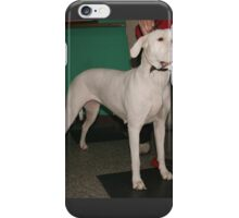A Dogo Argentino with iPhone Case/Skin