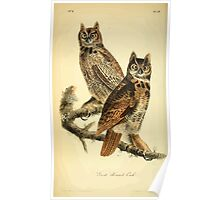 James Audubon Vector Rebuild - The Birds of America - From Drawings Made in the United States and Their Territories V 1-7 1840 - Great Horned Owl Poster