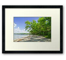 Danube River Bank Framed Print