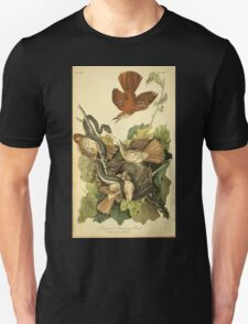 James Audubon Vector Rebuild - The Birds of America - From Drawings Made in the United States and Their Territories V 1-7 1840 - Ferruginous Mocking Bird T-Shirt