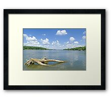 Sunny Danube Riverscape Framed Print