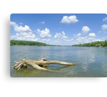 Sunny Danube Riverscape Canvas Print