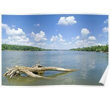 Sunny Danube Riverscape Poster
