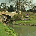 English homes and gardens by Tony Kemp