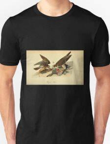 James Audubon Vector Rebuild - The Birds of America - From Drawings Made in the United States and Their Territories V 1-7 1840 - Perigrine Falcon T-Shirt