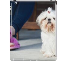 Shih tzu pet iPad Case/Skin