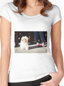 Shih tzu pet Women's Fitted Scoop T-Shirt