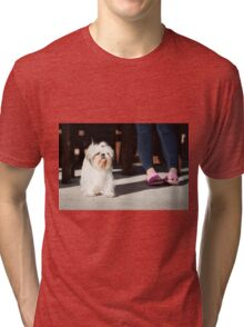 Shih tzu pet Tri-blend T-Shirt
