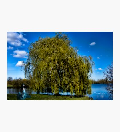weepy willow daydreamer~ Photographic Print