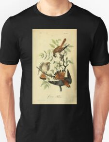 James Audubon Vector Rebuild - The Birds of America - From Drawings Made in the United States and Their Territories V 1-7 1840 - Sparrow Falcon T-Shirt
