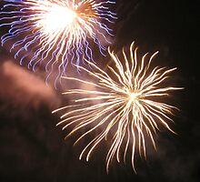 Full bloom firework by AuntieBarbie