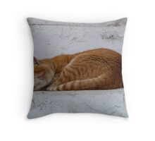 Let sleeping cats lie... Throw Pillow