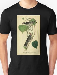 James Audubon Vector Rebuild - The Birds of America - From Drawings Made in the United States and Their Territories V 1-7 1840 - Tyrant Flycatcher or King Bird T-Shirt