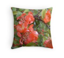 Japanese Quince (Japonica) Throw Pillow