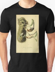James Audubon Vector Rebuild - The Birds of America - From Drawings Made in the United States and Their Territories V 1-7 1840 - Chesnut Crowned Titmouse T-Shirt