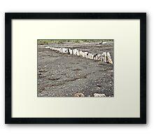 Wood Beach Framed Print