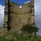 Castle ruin by Julie Short