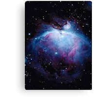 The galaxy  Canvas Print