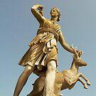 Goddess of the Hunt by Finbarr Reilly