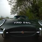 E Type, Nose to Nose by Matthew Walters