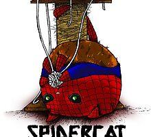 Suupurrrheroes - Spidercat by welcomethemadne