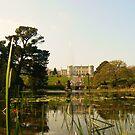 Powerscourt  lake. by Finbarr Reilly
