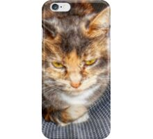 A Cat Named Peaches iPhone Case/Skin