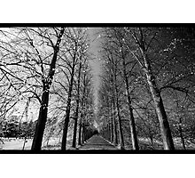 The Dark and The Light Photographic Print